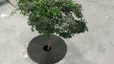 Mall of America Tree Grating